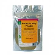 Health Trade Kelp Powder BIO 50gr