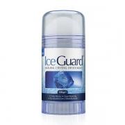 Ice Guard Φυσικός αποσμητικός κρύσταλλος 120g