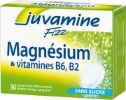 Juvamine Fizz Magnesium + B6, B2 (30 tabs)