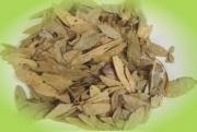 Σιναμικής φύλλα